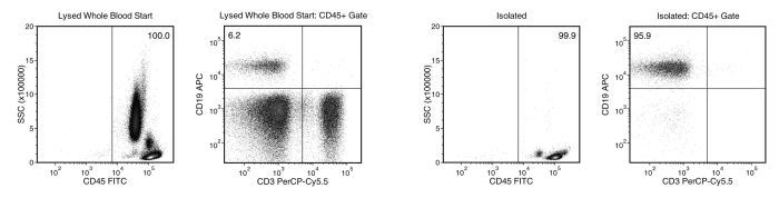 Typical EasySep™ Direct Human B Cell Isolation Profile