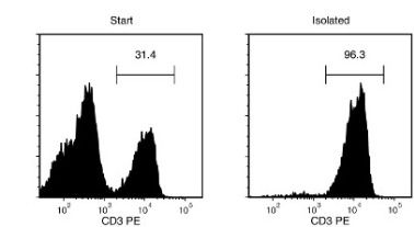 Typical EasySep™ Mouse T Cell Isolation Profile