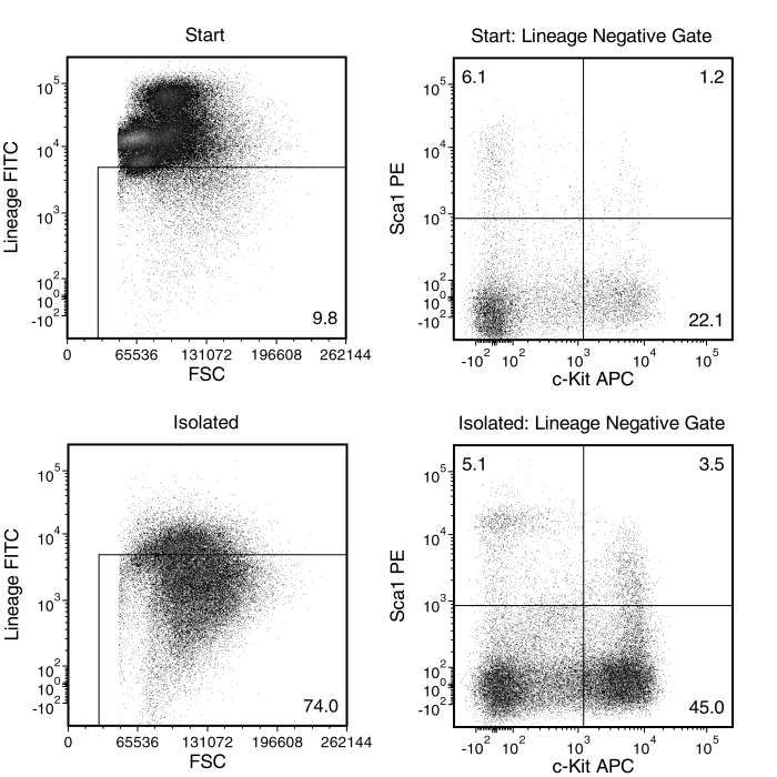 Typical EasySep™ Mouse Hematopoietic Progenitor Cell Isolation Profile