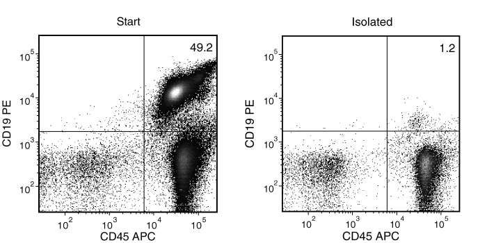 Typical Mouse Streptavidin Rapidspheres™ CD19 (CD19+CD45+) Depletion Profile