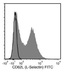 Flow Cytometry Analysis of C57BL/6 Mouse Splenocytes