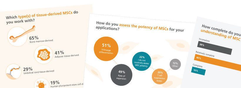 Mesenchymal stem cell survey results infographic
