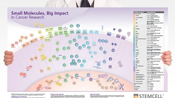 Small molecules in cancer research wallchart