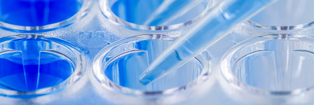 ELISA Kits Highly Sensitive and Accurate Analyte Quantification Every Time