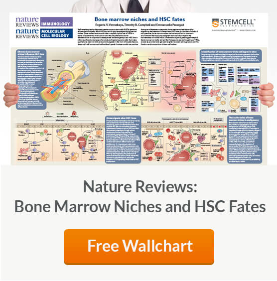 "Request your free copy of ""Bone Marrow Niches and HSC Fates"" from Nature Reviews Immunology and Nature Reviews Molecular Cell Biology."