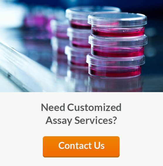 Contract Assay Services (CAS) Provides Standardized and Customized Assays and Toxicity Testing