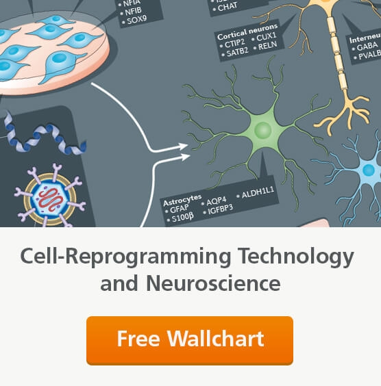 Request a free wallchart on cell-reprogramming technology and neuroscience.
