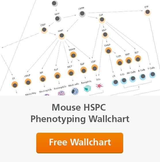 Request a Free Mouse Hematopoietic Stem and Progenitor Cell (HSPC) Phenotyping Wallchart