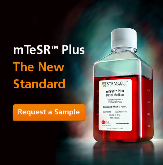 Request a Sample of mTeSR™ Plus: The New Standard