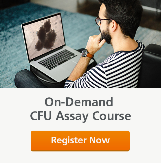 Image of man completing the on-demand CFU assay course on his laptop.